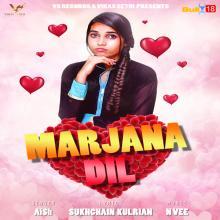 Marjana Dil