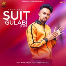 Suit Gulabi