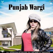 Punjab Wargi