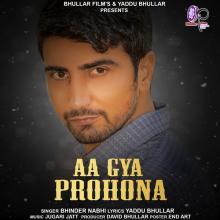 Aa Gaya Pronona