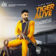 Tiger Alive