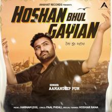 Hoshan Bhul Gayian