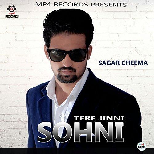 Tere Jinni Sohni