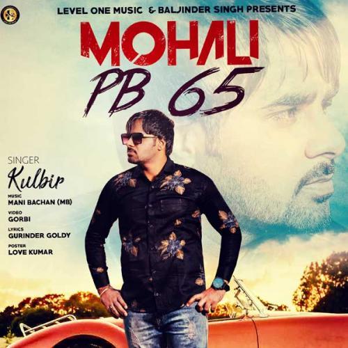 Mohali PB 65