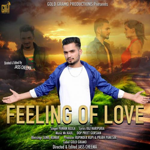 Feeling Of Love