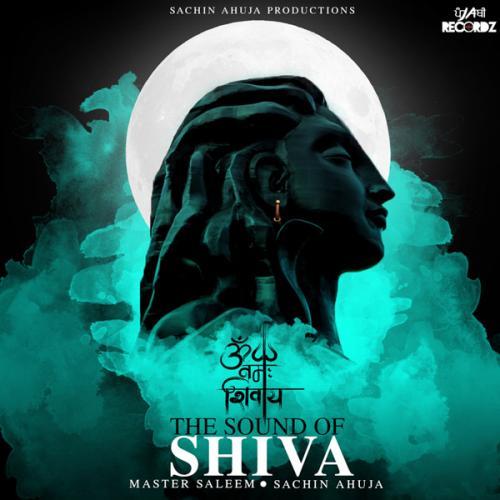 The Sound Of Shiva