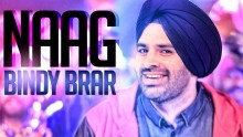 Bindy Brar - Naag
