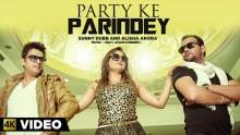 Sunny Dubb - Party K...