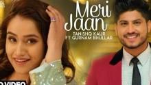 Meri Jaan - Tanishq Kaur Ft Gurnam ...