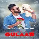 Gulaab