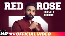 Red Rose - Dilpreet ...