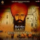 Real Hero Sant Bhind...